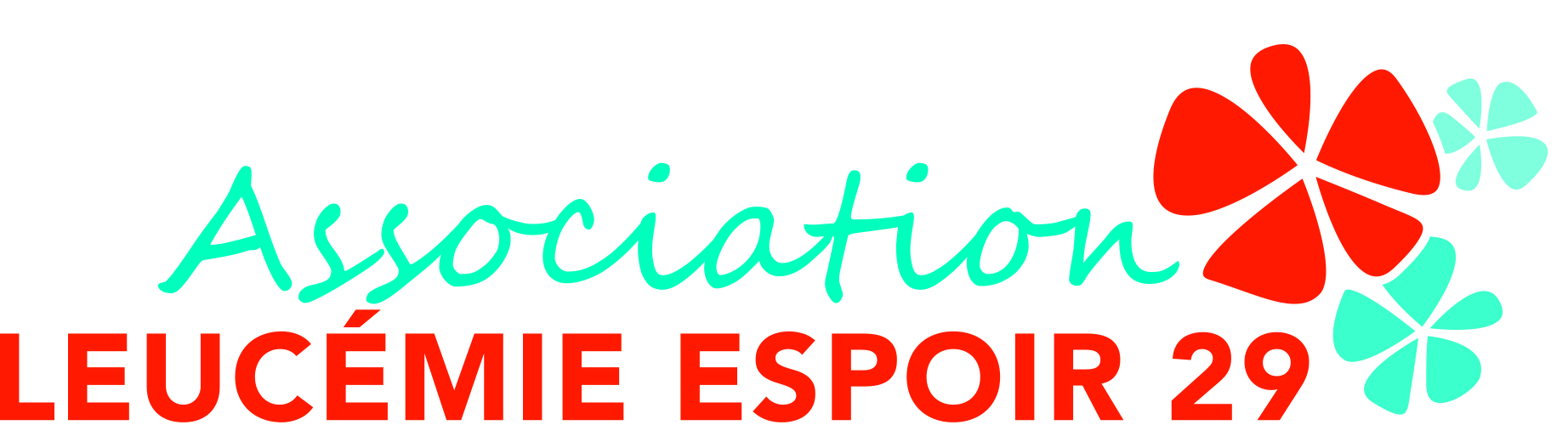 Logo Leucémie espoir 29 - Céline et Stéphane